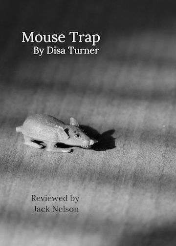 mouse_trap_cover